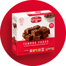 Front view of photograph of a box of Famous Fudge Baking Kit on a red circle. The kit shows the Carnation logo above a red plate stacked with fudge squares and a dark red label featuring the product name on a pink striped box.